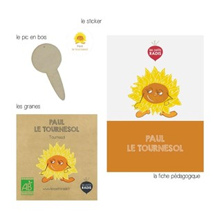 Mini-kit de semis - Graines de tournesol BIO - Paul le tournesol