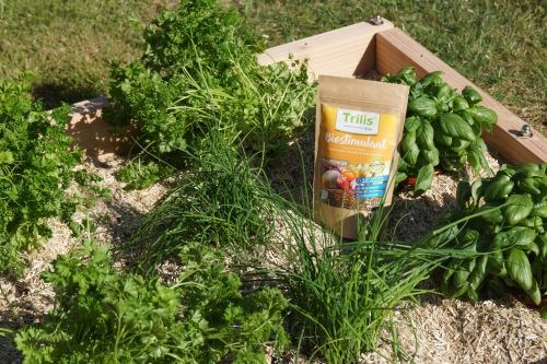 LE PACK POTAGER AROMATES 5
